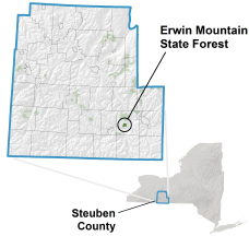 Erwin Mountain State Forest locator map