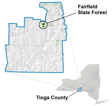 Fairfield State Forest locator map
