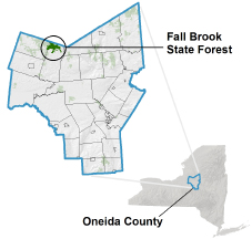 Fall Brook State Forest locator map
