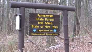 Farmersville State Forest Sign