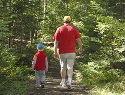 image of a father and son enjoying a walk through a forest