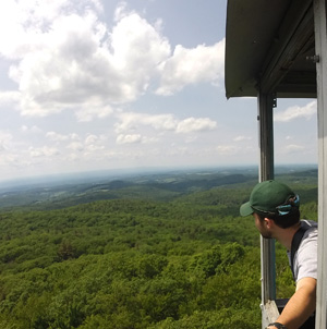 View from the Beebe Hill fire tower