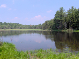 Lake at Five Streams State Forest
