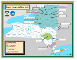 Click this small map to get an enlarged map showing Forest Legacy Areas and projects.