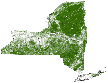 map of New York State showing forested areas of 5 acres in size and greater