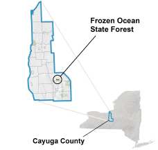 Frozen Ocean Location Map