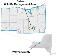 Galen WMA locator map