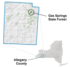 Gas Springs State Forest locator map