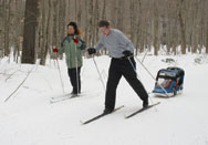 family cross country skiing in woods