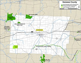 small map of Genesee County