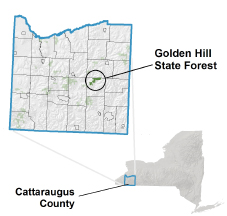 Golden Hill State Forest locator map