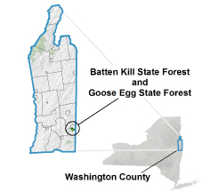 Batten Kill and Goose Egg State Forest locator map