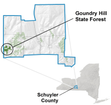 Goundry Hill State Forest
