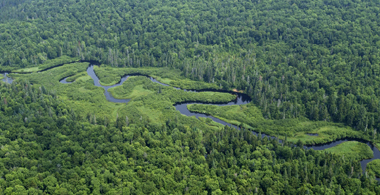 A Meandering Adirondack River