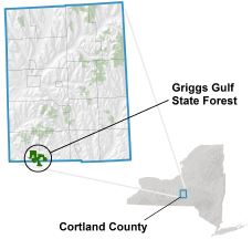 Griggs Gulf State Forest locator map