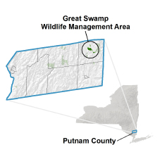 Great Swamp locator map