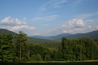 View of Halcott Mountain Wild Forest