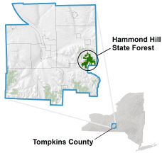 Hammond Hill State Forest locator map
