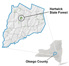 Hartwick State Forest locator map