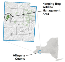 Hanging Bog WMA locator map