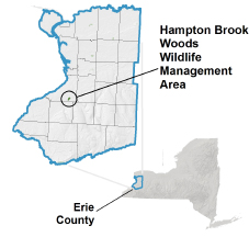 Hampton Brook Woods WMA locator map