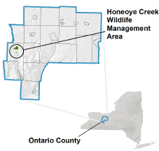 Honeoye Creek WMA locator map