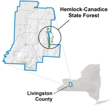 Hemlock-Canadice State Forest locator map