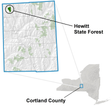 Hewitt State Forest locator map