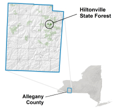 Hiltonville State Forest locator map