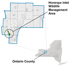 Honeoye Inlet WMA locator map