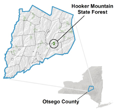 Hooker Mountain State Forest