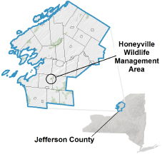 Honeyville WMA locator map