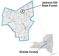 Jackson Hill State Forest locator map