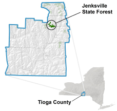 Jenksville State Forest locator map