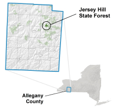 Jersey Hill State Forest locator map