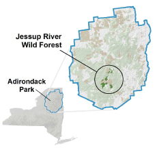 Jessup River Wild Forest Locator Map