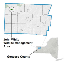 John White WMA Locator Map