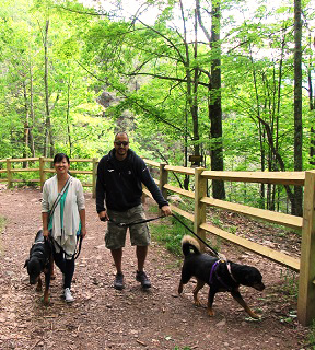 two people walking dogs in the Kaaterskill Wild Forest