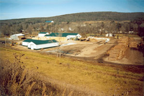 View of a private timber processing facility located near Karr Valley Creek State Forest