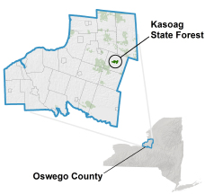 Kasoag State Forest locator map