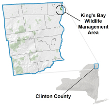 Kings Bay WMA Locator Map