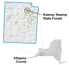 Keeney Swamp State Forest locator map