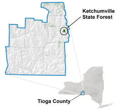 Ketchumville State Forest locator map