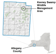 Keeney Swamp WMA locator map
