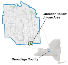 Labrador Hollow Unique Area locator map