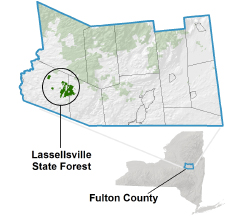 Lassellsville State Forest locator map