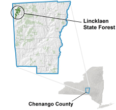 Lincklaen State Forest locator map