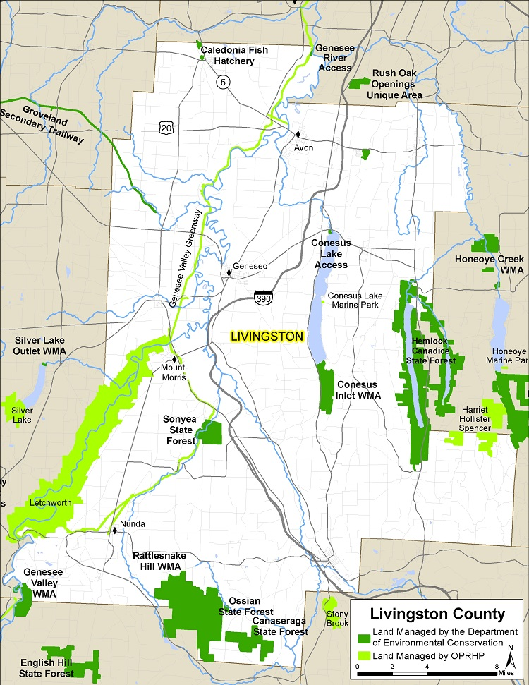 Map of Livingston County showing State owned lands open to public recreation