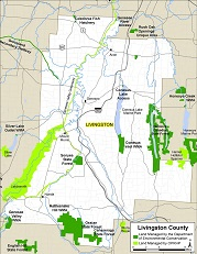 small map of Livingston County