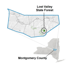 Lost Valley State Forest locator map